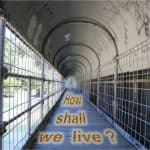 Life Reflection – How Shall I Live?