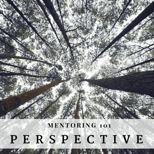 Mentoring 101 Perspective