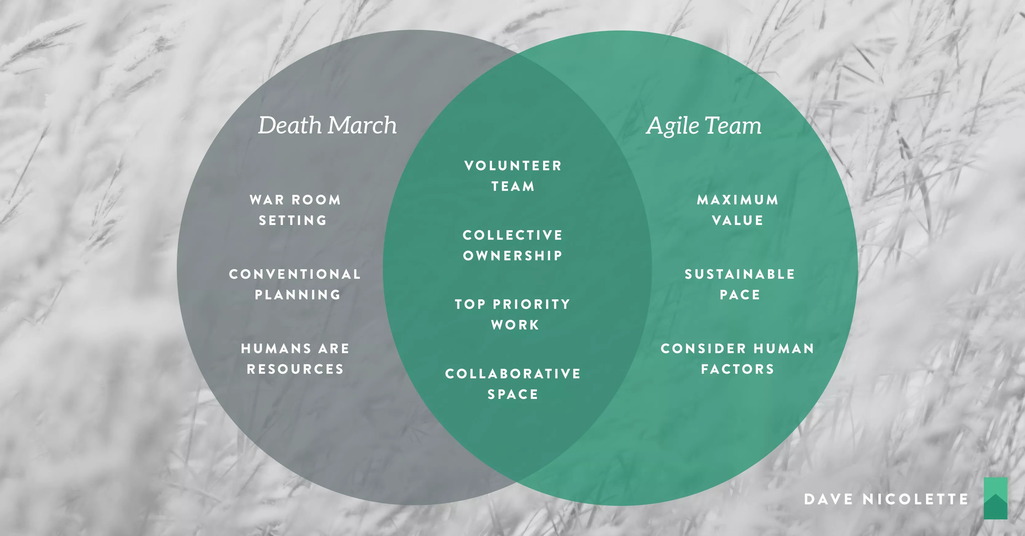 Prevalence In A Sentence The Agile Death March