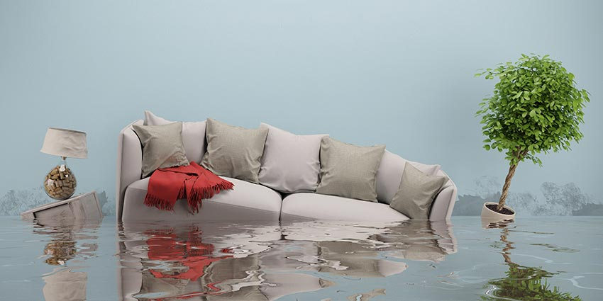 6 Things You Should Do After Your House Floods