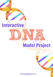 Interactive DNA Model that will Connect Kids and DNA