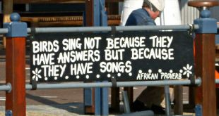 birds sing not because they have answers