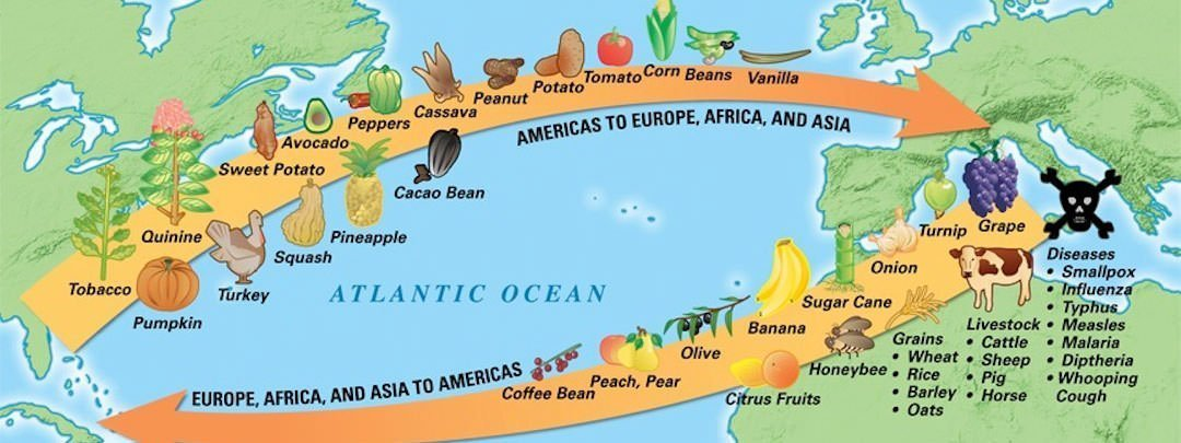 10 Interesting Facts About The Columbian Exchange Learnodo Newtonic
