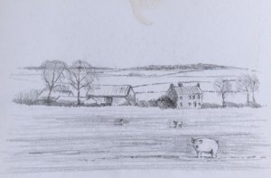 planning sketch of farmyard