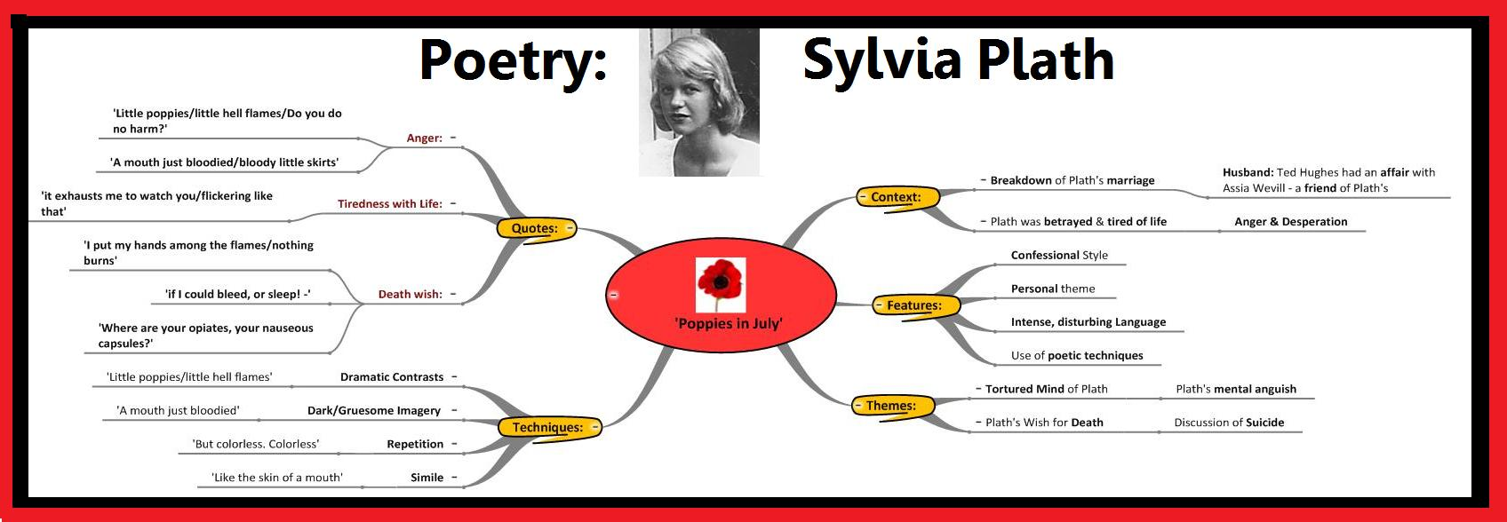 "sylvia plath sow essay Then write an essay in which you of the sow is enhanced by such features as diction, devices of sound, images, and allusions ""sow"" by sylvia plath god knows."