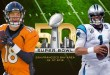 super-bowl-50-manning-newton