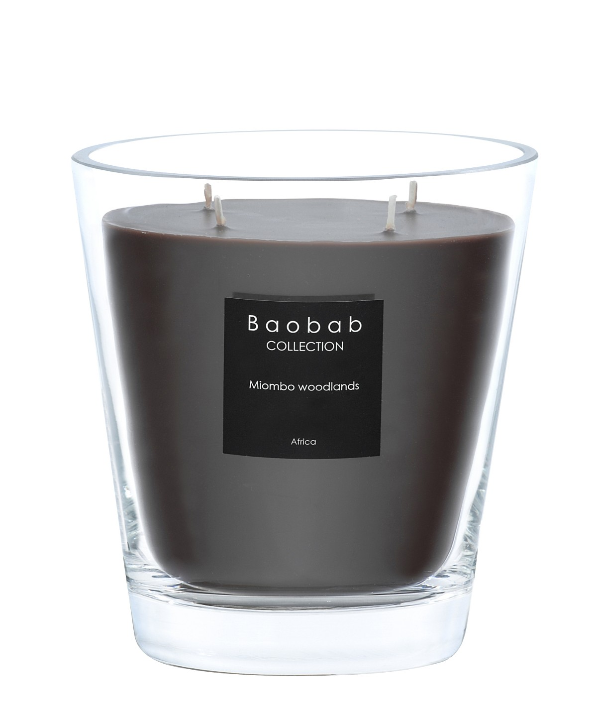 Bougie Baobab Paris Bougie Max 16 Miombo Woodlands De Baobab Collection