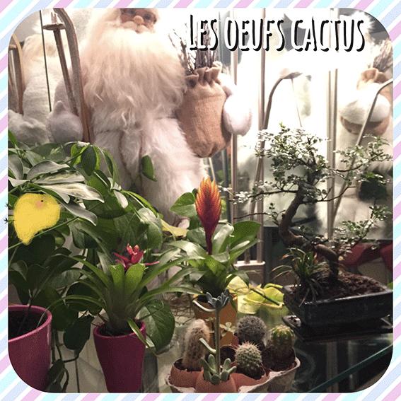 comment avoir un petit jardin dans sa maison
