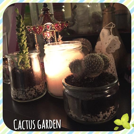 Mon petit jardin de cactus
