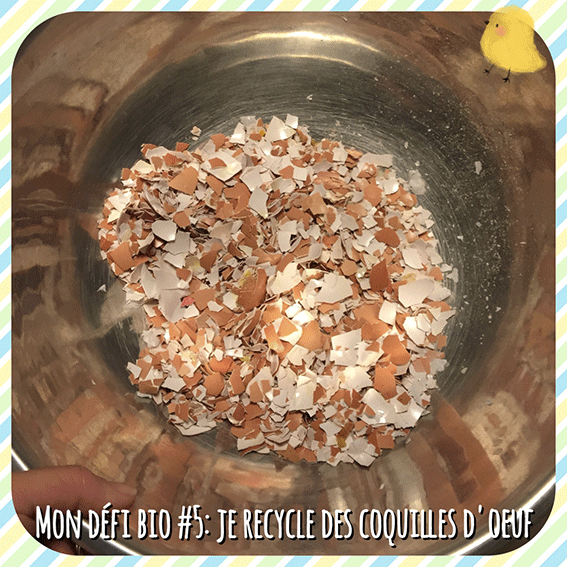 Mon défi Bio #5: Je recycle des coquilles d'oeuf