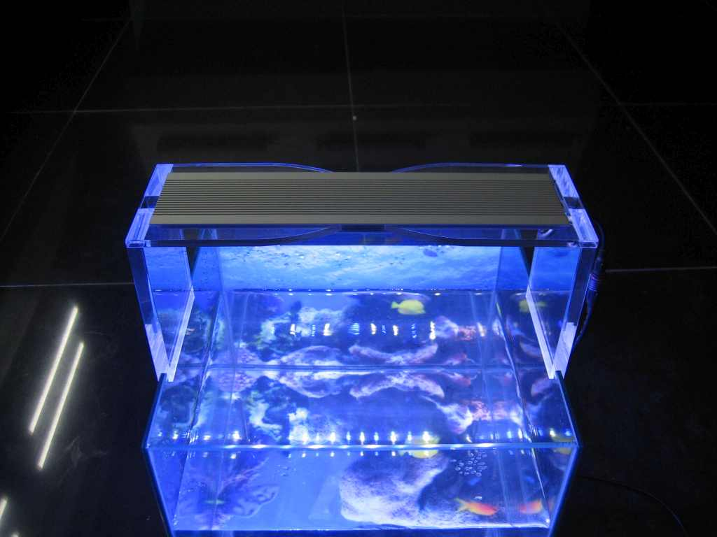 Sier Led Lampen Led Aquarium Ledware Uw Specialist In Ledverlichting Led