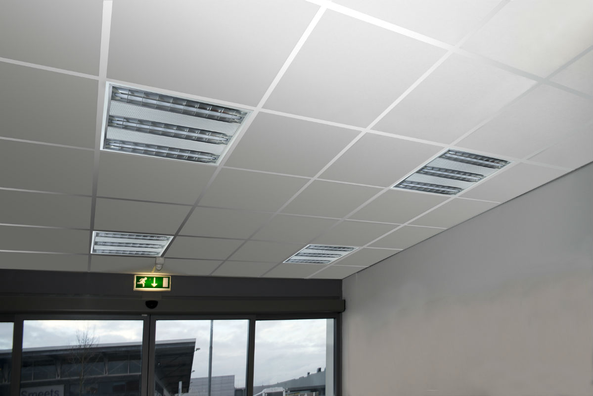 Rooster Tl Verlichting Led Verlichting Tl Armatuur - Ledsolucion - Professionele
