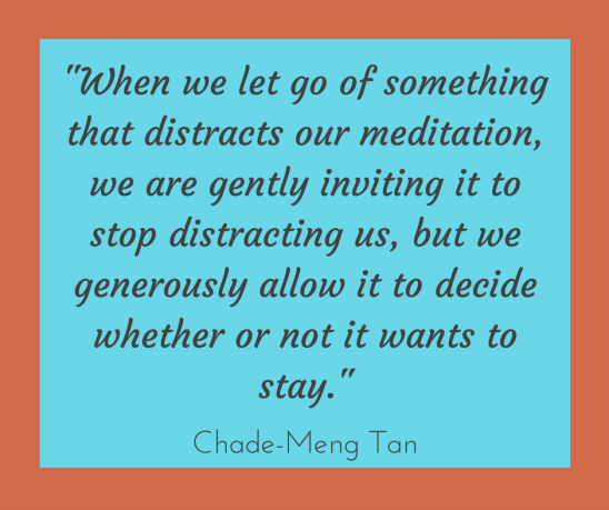 -When we let go of something that distracts our meditation, we are gently inviting it to stop distracting us, but we generously allow it to decide whether or not it wants to stay.-