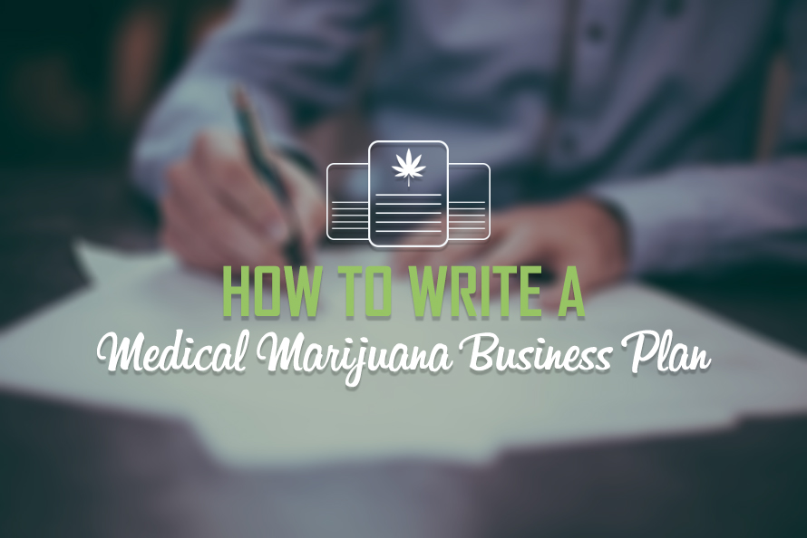 Help Me Write A Business Plan How To Write A Business