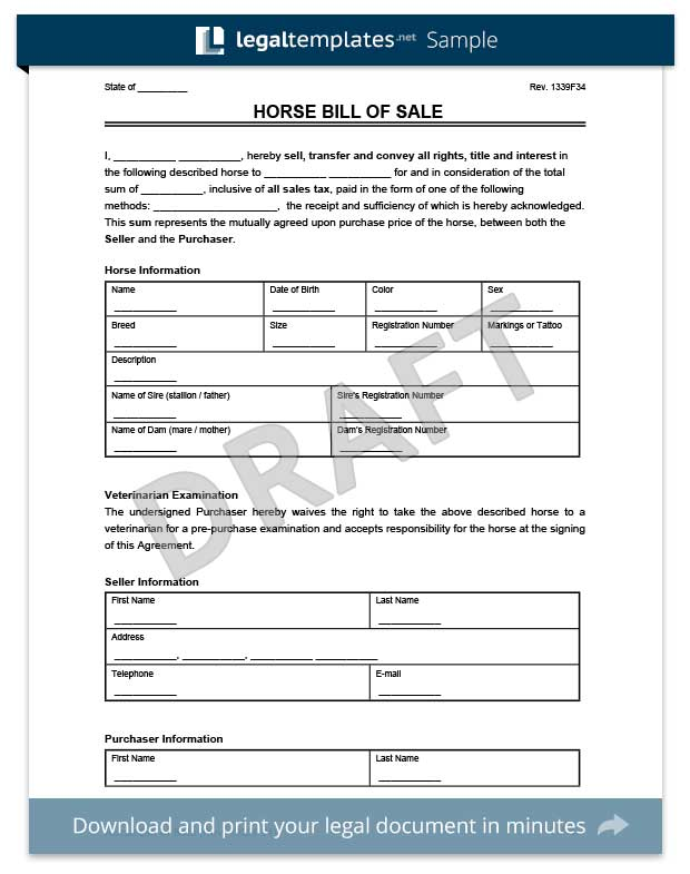 Bill of Sale Form Create a Free Vehicle / Car Template