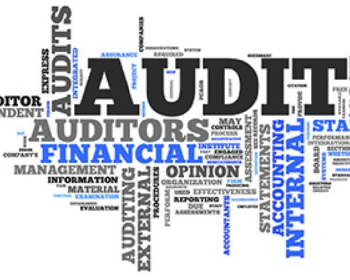 Legislative Audits \u2013 Idaho State Legislature