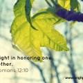 Romans 12 10