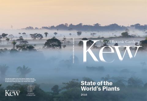 Pour la première fois, un rapport sur l'état des plantes dans le monde.
