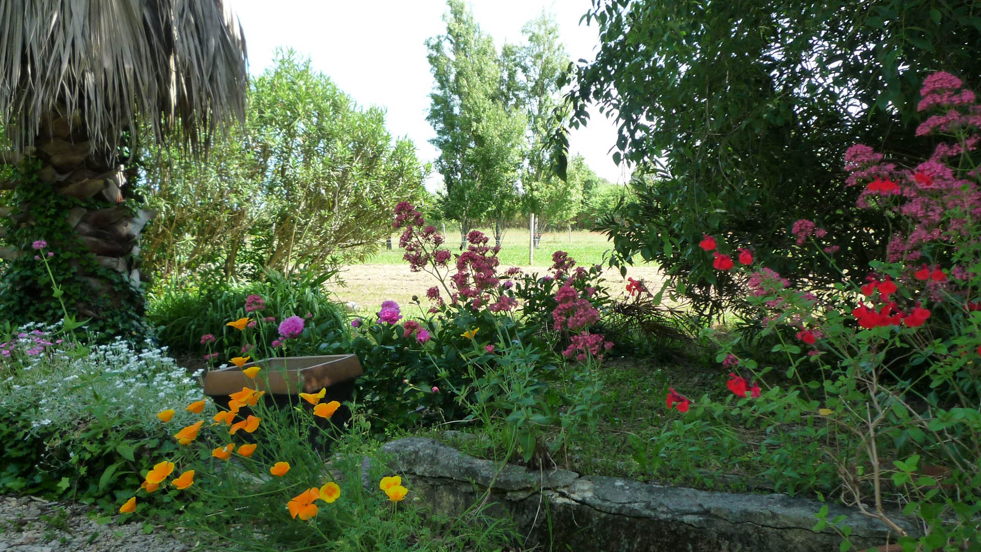 Fleur Jardin Cottage Bed And Breakfast In Saint Rémy De Provence France Le