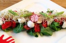 salade_detox_grainesGermees