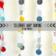 Celebrate Baby Bunting_thumb[1]