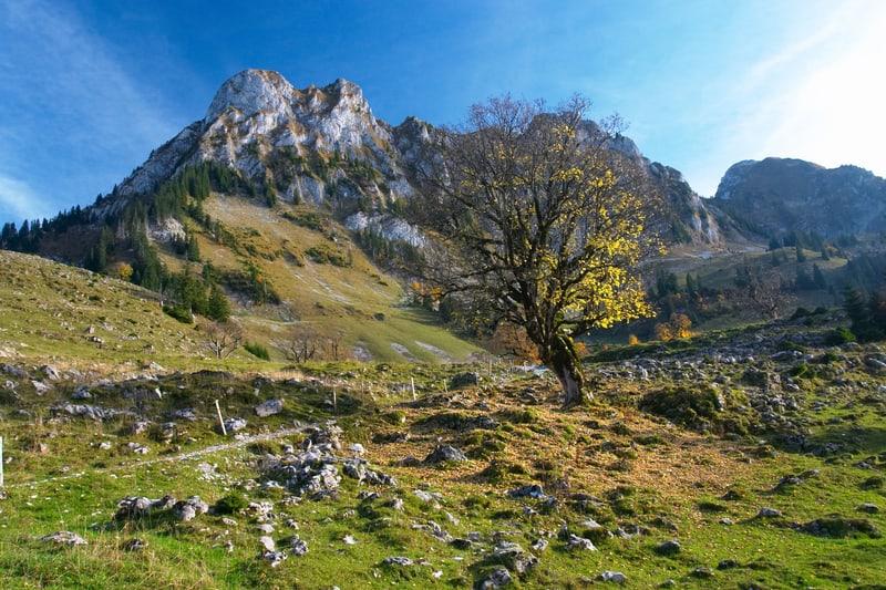 Rocky Jura mountains - © Exinocactus   Dreamstime.com