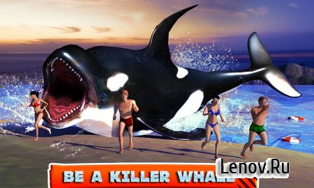 Killer Whale Beach Attack 3D v 1.0 Мод (Many coins & More)