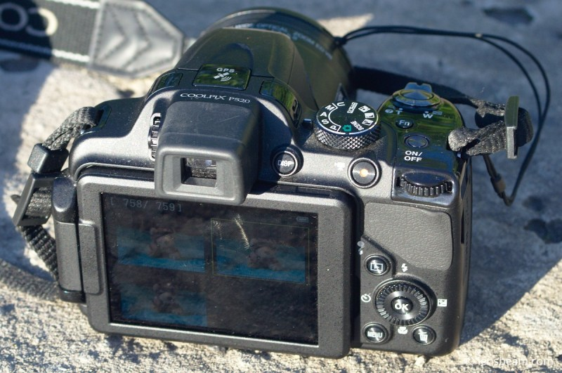 Large Of Nikon Coolpix P520