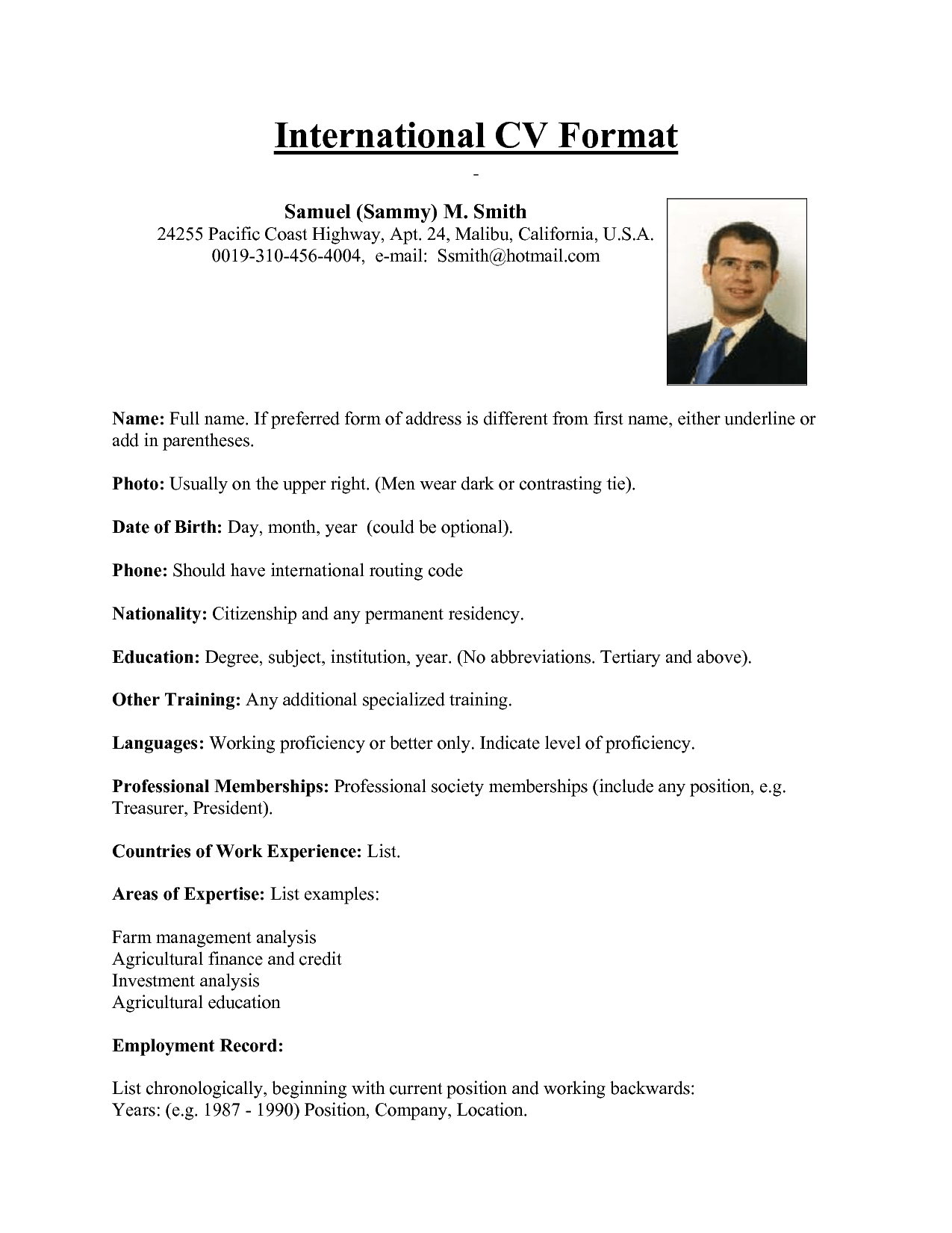 international curriculum vitae resume format