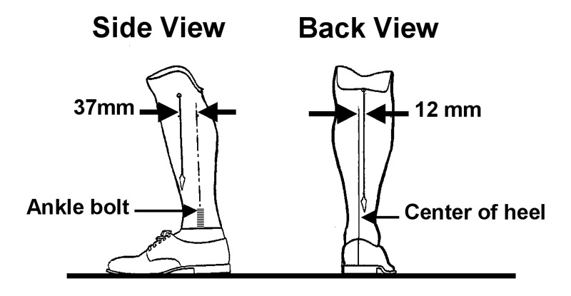 Simplifying alignment for transtibial prostheses Lower Extremity