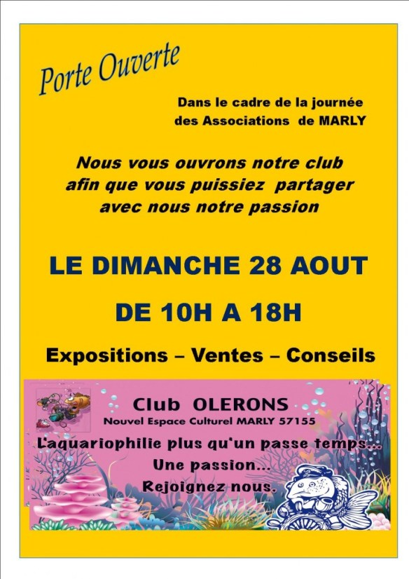 Club oleron evenement 28 aout 2016 exposition