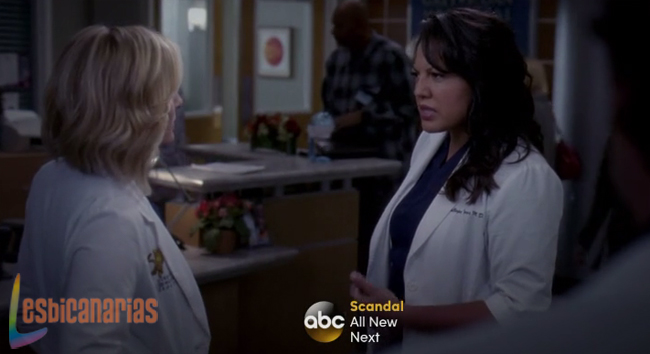 Callie y Arizona discutiendo