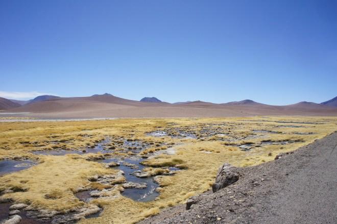 Paysage chilien avant la frontière argentine