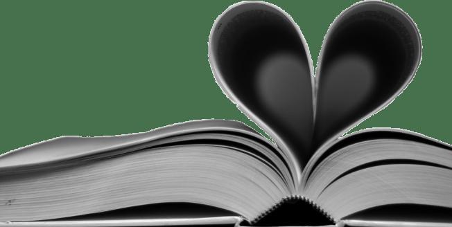blogroll livre coeur les deboires de carlita