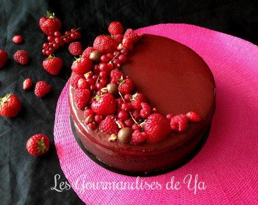 Entremets fruits rouges - chocolat noir LGY
