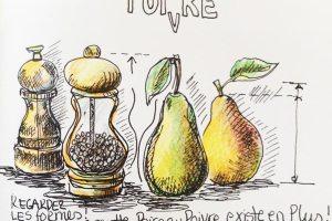 dessin-stylo-Poire-poivre-6l