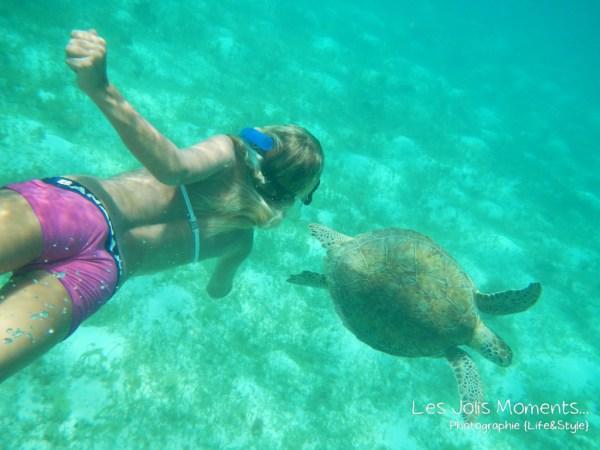 Tobago Cays 8