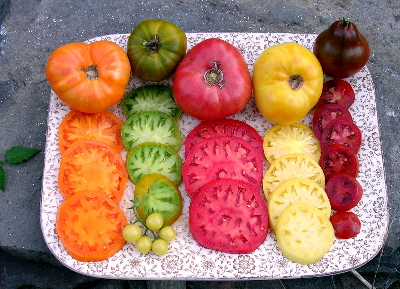 Heirloom Tomatoes and Terroir | Leslie Land - in Kitchen and Garden
