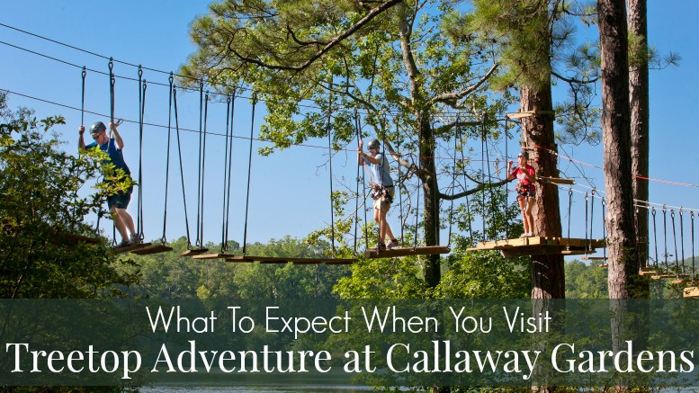 Thrills chills with treetop adventure at callaway gardens - Callaway gardens festival of lights ...