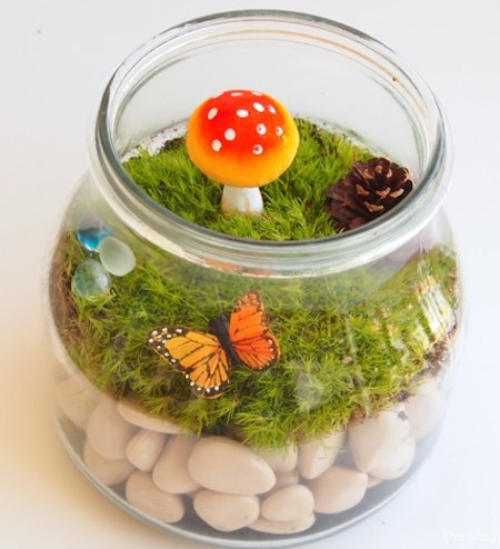Let's Make a Terrarium