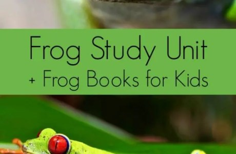 Frog Unit Study Ideas for Kids