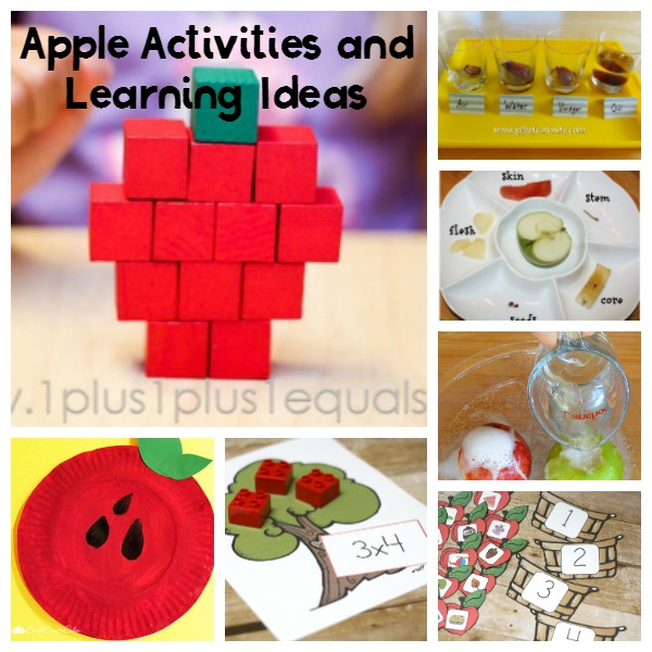 Apple unit study and activities for fall