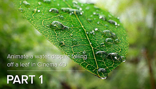 3d Leaves And Water Drop Wallpaper Cinema 4d Animating Dew Drops On A Leaf Lesterbanks