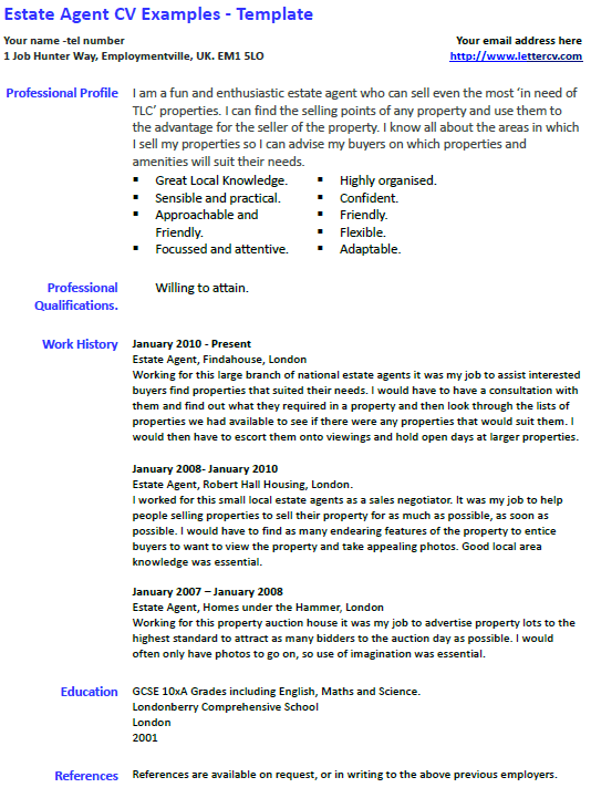 Cv Sample Kitchen Assistant Cv Resume Example Executive Chef Acesta Jobinfo Estatge Agent Cv Example And Template Lettercv