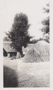 Native Huts Espiritu Santo, New Hebrides