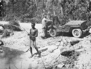 Malaria Control, South Pacific