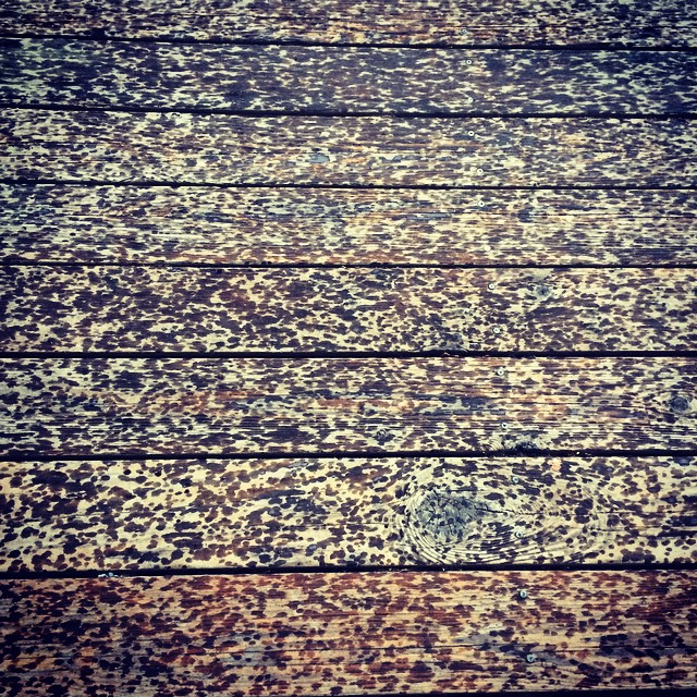 The art of rain drops on wood.