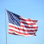米国個別株の保有はこの10銘柄