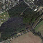 Officials Working to Preserve Croydon Woods