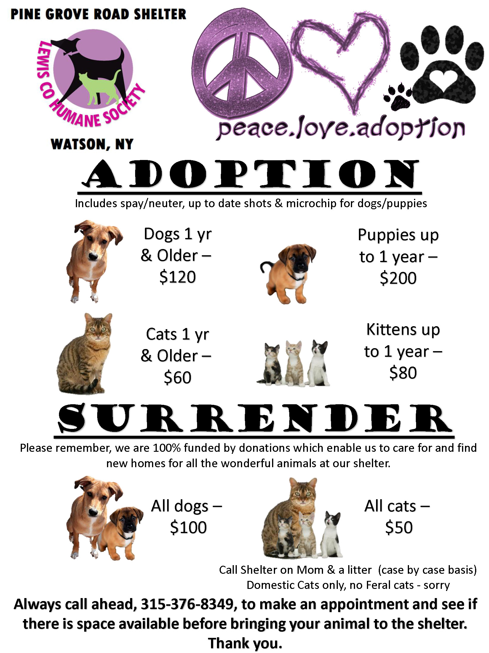 Rescue Dogs Puppies For Adoption Home